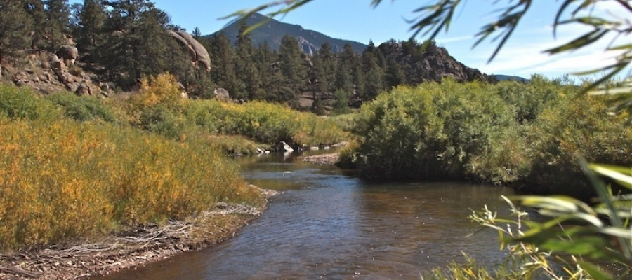 FlyWater was hired by Historic Williams Ranch to improve the fishery on Tarryall Creek that runs through their property.