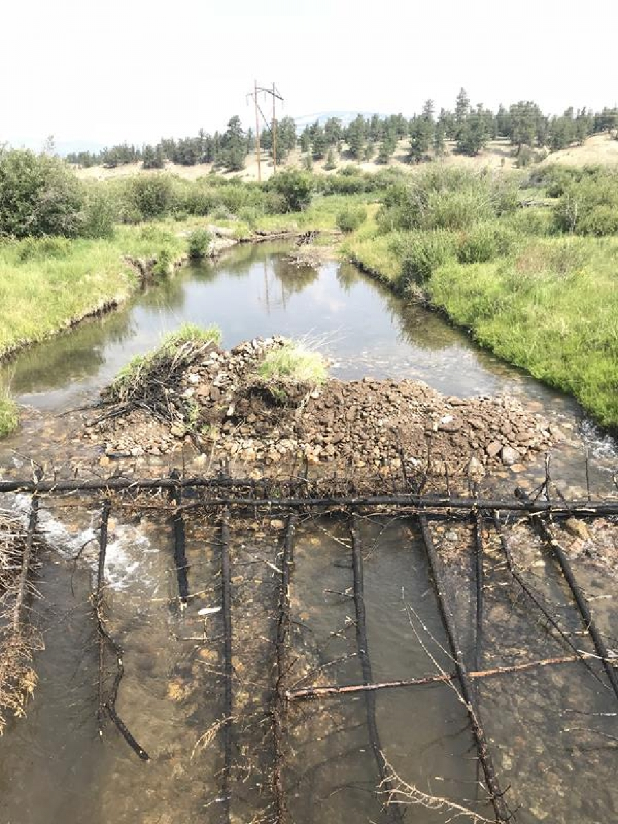 South Park Riparian Reconnect Projects